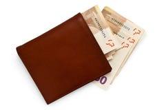 背景查出的皮革货币钱包白色 免版税库存照片