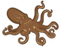 背景查出的章鱼游泳白色 免版税图库摄影
