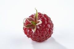 背景查出的莓白色 库存图片
