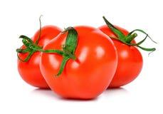背景查出的蕃茄白色 免版税图库摄影