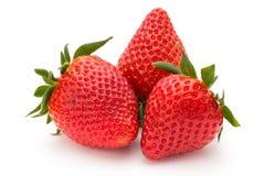 背景查出草莓白色 新鲜的浆果 库存照片