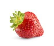 背景查出草莓白色 免版税图库摄影