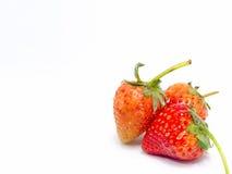 背景查出草莓白色 图库摄影
