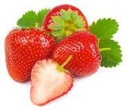 背景查出草莓白色 免版税库存照片