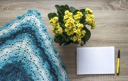 背景树黄色花kalandi蓝色部分洗染的围巾bactus钩编了编织物毛海织物美利奴绵羊的羊毛丙烯酸的毛线笔记薄笔 库存图片