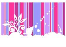 背景桃红色紫罗兰 免版税库存照片