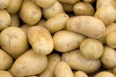 背景框架充分的potatoe 免版税库存照片