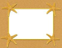背景框架沙子海星 免版税库存照片