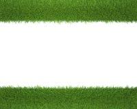 背景框架空白草的照片 向量例证