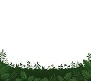 背景框架绿色留下白色 免版税库存图片