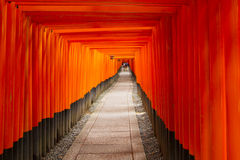 背景桔子torii 免版税库存照片