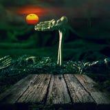 背景棒万圣节月光附注 头骨和骨骼有满月和木头的 免版税库存图片