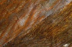 背景棕色木 免版税图库摄影