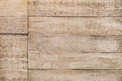 背景棕色树荫纹理木头 空的简单的黑暗的深刻的现代夏天,春天,秋天颜色 明亮的半音样式,图象 免版税图库摄影
