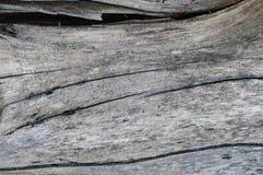 背景棕色树荫纹理木头 库存图片