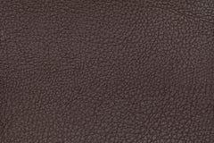 背景棕色皮革纹理 特写镜头照片 背景米黄爬行动物皮肤构造了 库存照片