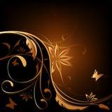 背景棕色花卉桔子 免版税库存图片