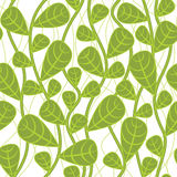 背景植物无缝 向量例证