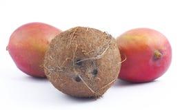 背景椰子芒果二白色 免版税库存照片