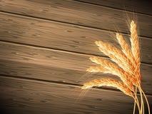 背景概念木食物的麦子 10 eps 库存照片
