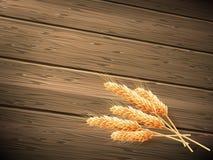 背景概念木食物的麦子 10 eps 免版税库存图片