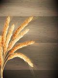 背景概念木食物的麦子 10 eps 免版税图库摄影