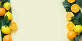背景概念框架沙子贝壳夏天 在黄色的热带水果,柠檬,橙色和绿色叶子边界  复制空间并且从上面观看 免版税库存照片