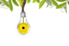 背景概念eco能源查出的白色 免版税库存图片