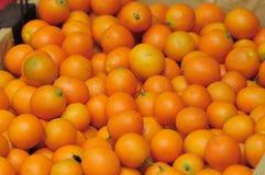 背景橘子 免版税库存照片