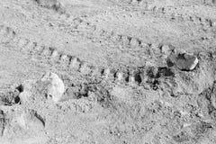 背景汇集-水泥厚实的层数在地面上的 免版税库存照片