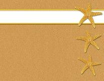 背景沙子海星 免版税库存图片