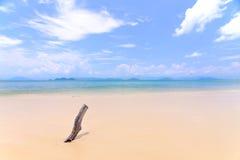 背景沙子海运纹理 库存图片