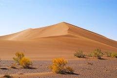 背景沙子 库存照片
