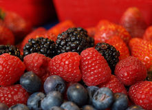 背景浆果五颜六色的新红色 免版税库存照片