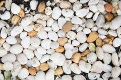 背景海石头 库存图片