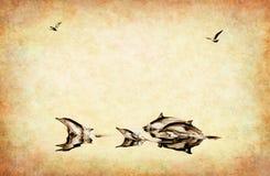背景海豚纹理 皇族释放例证