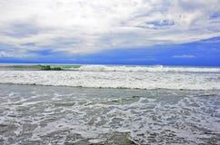 背景海滩分行横向海洋日落结构树 图库摄影