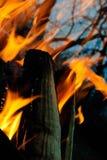 背景火发火焰高图象解决方法 库存图片