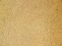 背景灰棕色墙壁 免版税库存照片