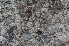 背景灰色石头 免版税库存照片