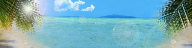 背景热带横幅的海滩 免版税图库摄影