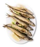 背景烹调重点桔子肉菜饭红色米有选择性的西班牙酒 被油炸的海鲜 Pescaito Frito 免版税库存图片