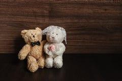 背景熊 库存照片