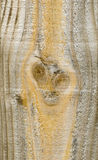 背景特写镜头谷物纹理木头 免版税库存图片