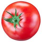 背景特写镜头蕃茄白色 免版税库存图片