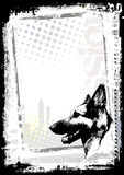 背景狗德国海报牧羊人 免版税库存图片