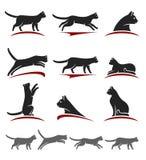 背景猫设计例证集合向量白色 向量 免版税库存照片