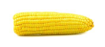背景玉米查出的甜白色 图库摄影