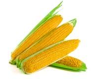 背景玉米查出的白色 顶视图 免版税图库摄影