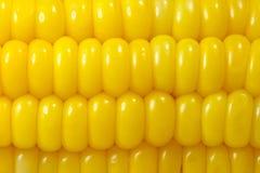 背景玉米甜点 免版税库存图片
